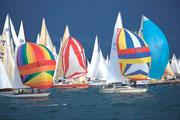 The Bay Regatta 1250€